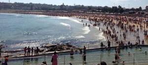 Shark scare ... beachgoers have evacuated the water at Bondi Beach