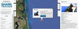 Location of  Mary Lee a Great White Shark