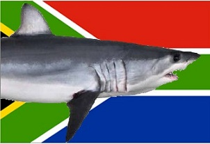 South Africa Shark Flag