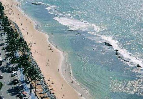 Shark Attack at Recife Brazil